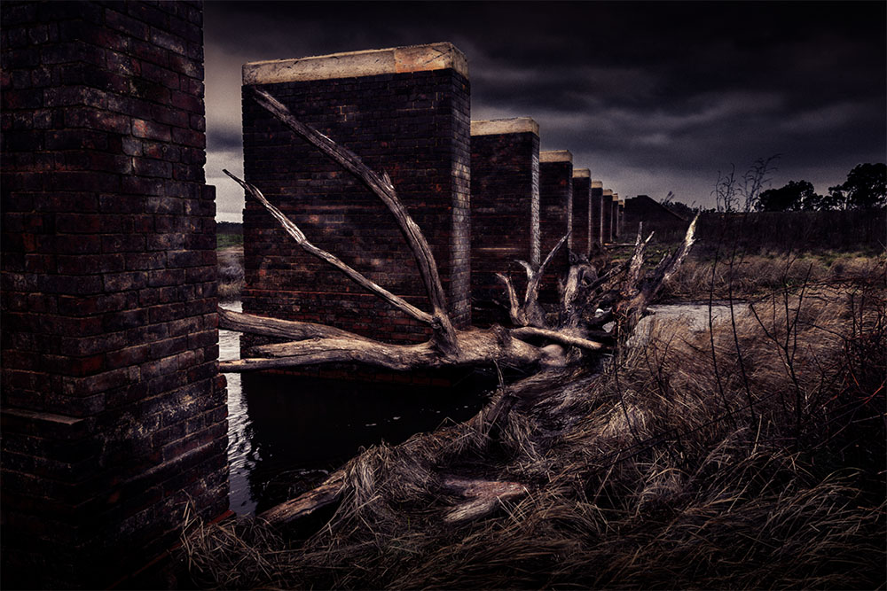 cairncurran-reservoir-railbridge-deadtree-newstead